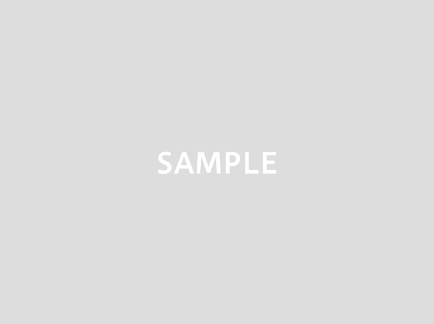 sample_big
